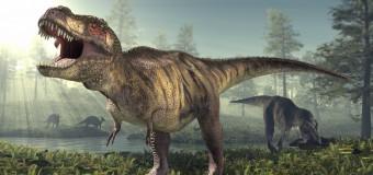 5 sinh vật cổ đại đáng sợ nhất từng xuất hiện trên Trái Đất