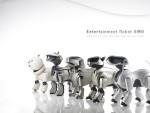 Chú Chó Robot Aibo – Bước Tiến Thành Công Trong Công Nghệ Chế Tạo Robot Nhật Bản
