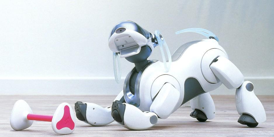 chu-cho-robot-aibo-2