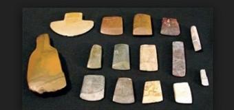 Di chỉ khảo cổ Phùng Nguyên