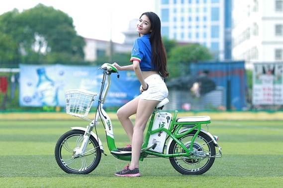 xe-dap-dien-chinh-hang-gia-re-40
