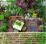 Tạo góc trang trí độc đáo cho khu vườn nhỏ của bạn