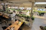 Thiết kế không gian xanh đẹp trong công sở