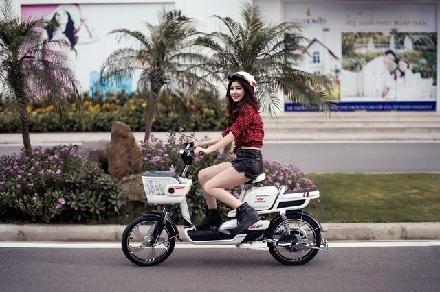 xe-dap-dien-chinh-hang-gia-re-54