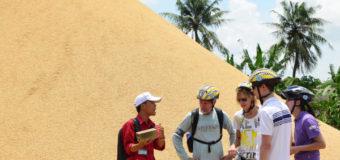 Ngành Du lịch và cơ hội nghề nghiệp hấp dẫn bạn trẻ
