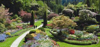 TÌm hiểu về thành phố thơ mộng Vancouver