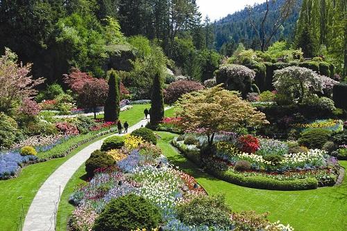 Công viên đô thị lớn nhất thế giới – công viên Stanley