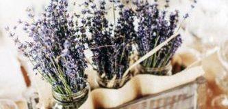 Ý tưởng trang trí đám cưới với hoa oải hương – lavender