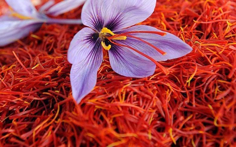 cách dùng nhụy hoa nghệ tây cao cấp