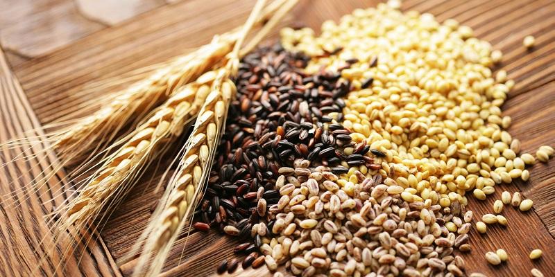 Hạt chia chứa nhiều dưỡng chất giúp ích cho bà bầu