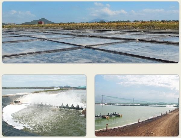 Hồ nổi được làm từ màng chống thấm HDPE