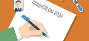 """5 phần mềm giúp CV xin việc lọt vào """"mắt xanh"""" của nhà tuyển dụng"""