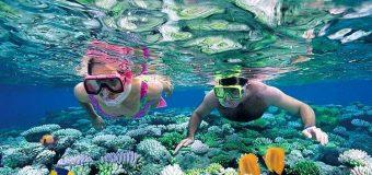 Hòn Mun và Hòn Một | Tour 4 đảo phải đến khi du lịch Nha Trang