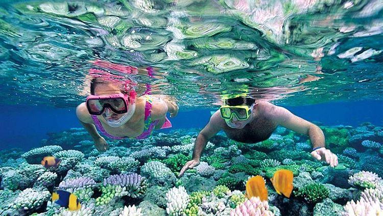 Photo of Hòn Mun và Hòn Một | Tour 4 đảo phải đến khi du lịch Nha Trang