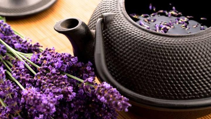 4 lợi ích và công dụng của trà hoa oải hương