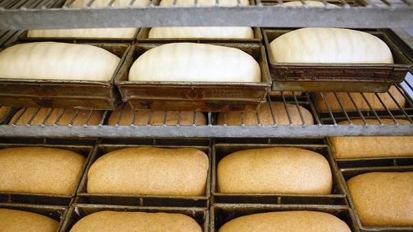 Tủ ủ bột làm bánh