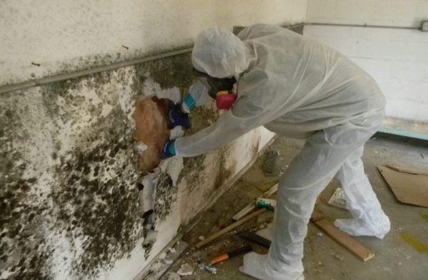 Giải pháp chống thấm tường nhà cũ - Vệ sinh tường thật sạch